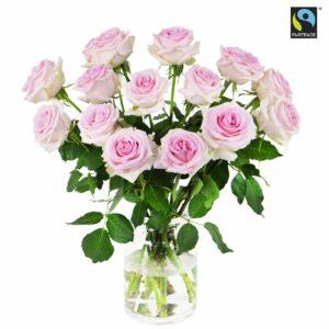 15 st långa, rosa Fairtrade-rosor. Ur Bringblooms sortiment.