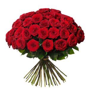 Rundbunden bukett med 50 röda rosor.
